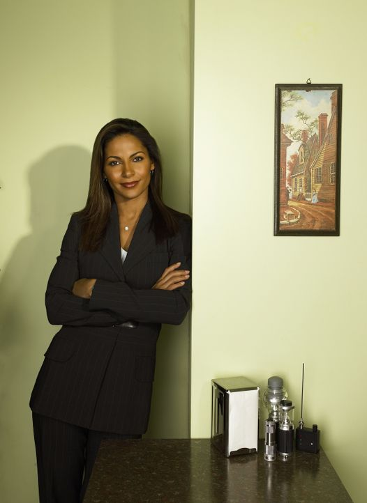 (1. Staffel) - Vertreterin des D.O.D., des Amerikanischen Verteidigungsministeriums: Allison Blake (Salli Richardson) ... - Bildquelle: Universal Television