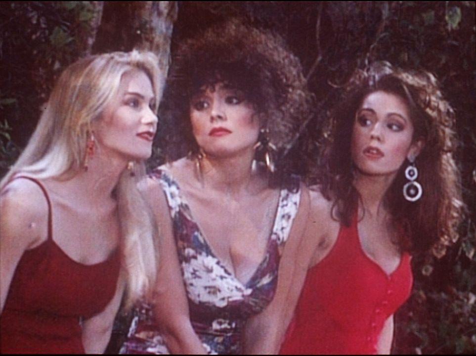 Weil sie ihre Verehrer zurückgewiesen haben, wurden Kelly (Christina Applegate, l.) und ihre Freundinnen, Lorraine (Liz Vassey, M.) und Diane (Lisa... - Bildquelle: Columbia Pictures