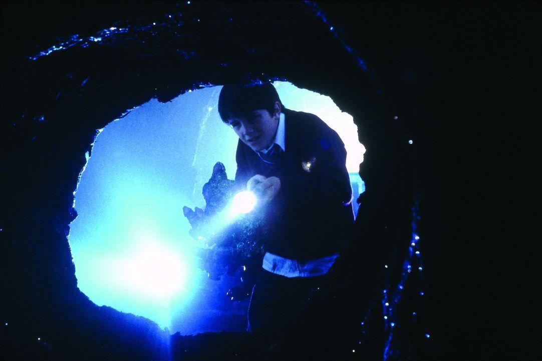 Eines Tages entdeckt der 12-jährige Young Quinn (Ben Thornton) eine Drachenhöhle ... - Bildquelle: Touchstone Pictures und Spyglass Entertainment Group, LP Im Verleih der Buena Vista International