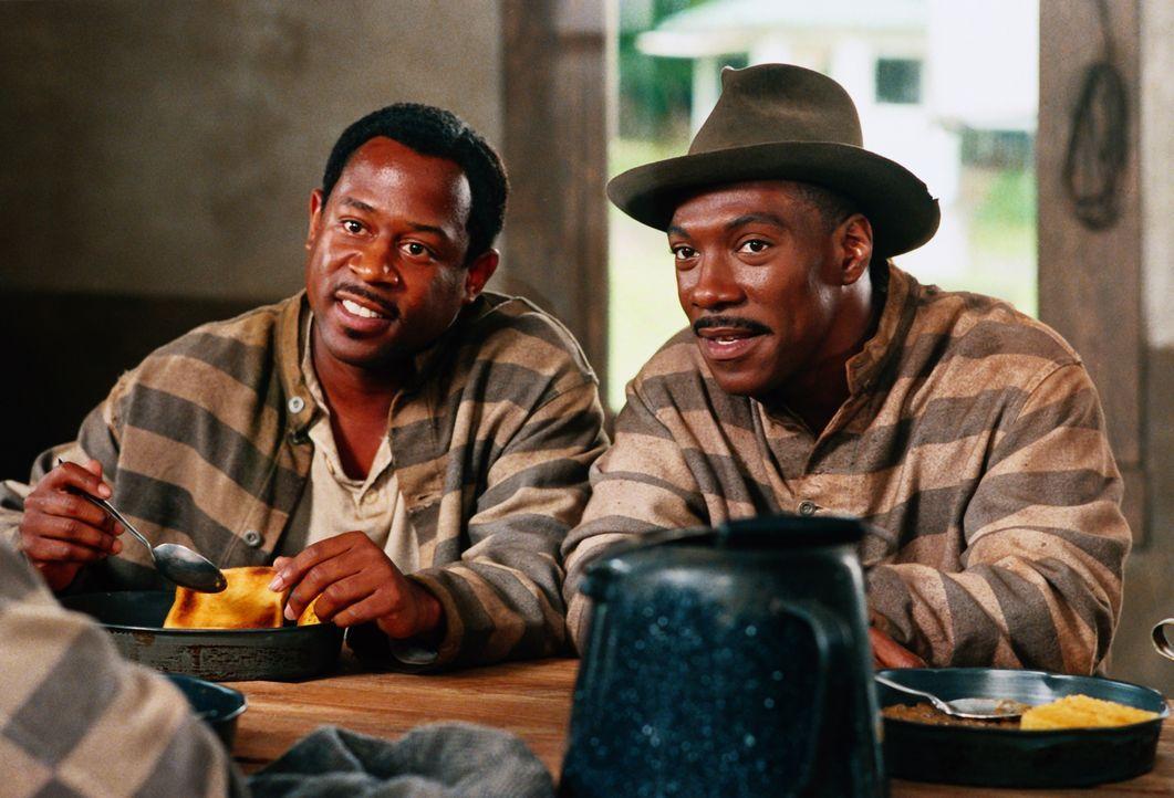Claude (Martin Lawrence, l.) und Ray (Eddie Murphy, r.) werden Zeugen eines Mordes und dann selbst als mutmaßliche Täter angeklagt und verurteilt. i... - Bildquelle: 1999 Universal Studios. All rights reserved