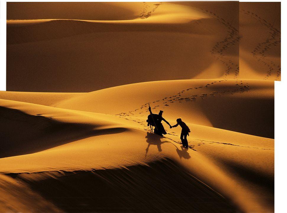 The Trail - Artwork - Bildquelle: Gaumont