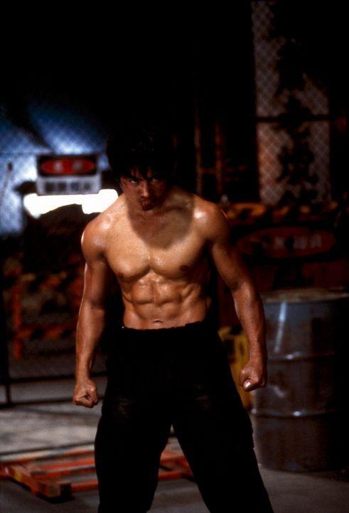 Beim letzten Auftrag verläuft nicht alles wie geplant. Detective Aguri Katsuragi (Sho Aikawa) gerät in die Fänge des Drogenbosses Kenji. Dieser b... - Bildquelle: Splendid