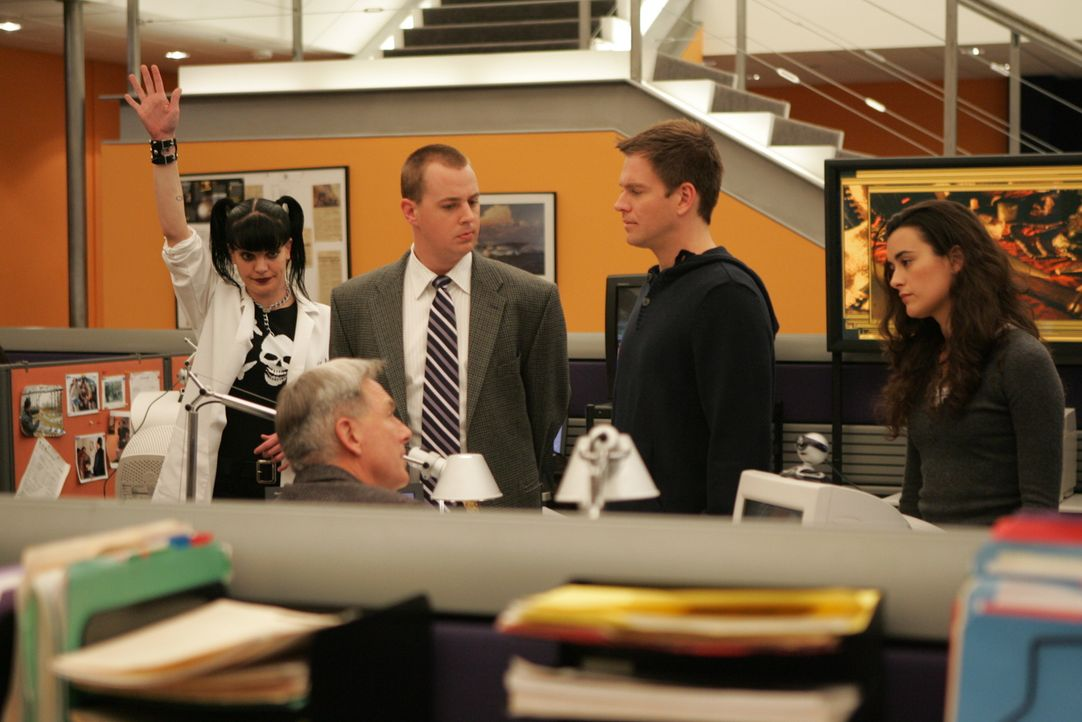 Arbeiten an einem neuen verzwickten Fall: Tim McGee (Sean Murray, M.), Anthony DiNozzo (Michael Weatherly, 2.v.r.), Abby Sciuto (Pauley Perrette, l.... - Bildquelle: CBS Television