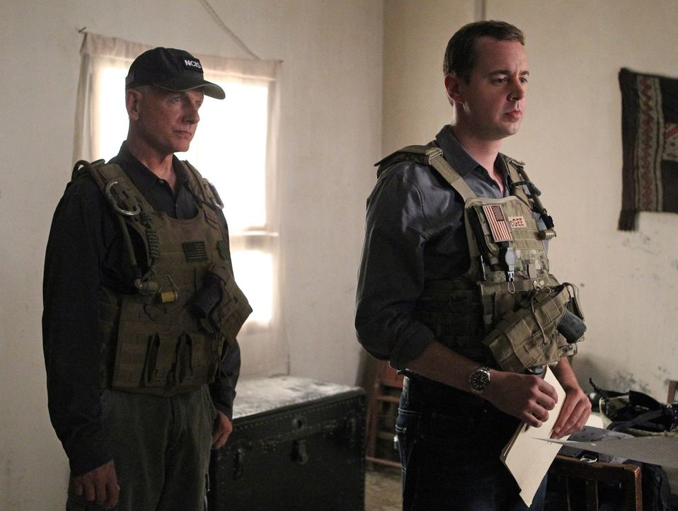 Bei den Untersuchungen in einem neuen Mordfall führt Gibbs (Mark Harmon, l.) und McGee (Sean Murray, r.) die Spur nach Afghanistan ... - Bildquelle: CBS Television