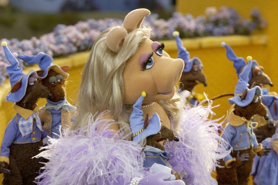 Gemeinsam mit den Munchkins begrüßt die Gute Hexe des Nordens die gelandete Dorothy und überreicht ihr die Silberschuhe, welche die Böse Hexe de... - Bildquelle: The Muppets Holding Company, LLC. MUPPETS characters and elements are trademarks of the Muppet Holding Company, LLC.  All rights reserved