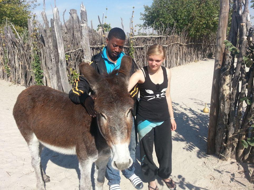 In Namibia bei Familie Kambalas bekommt Jaqueline die Chance, ihr Leben zu verändern. Doch wird sie diese nutzen? - Bildquelle: SAT.1