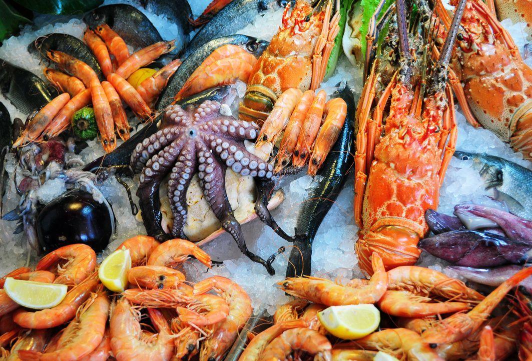Fisch und Meeresfrüchte  - Bildquelle: singidavar - Fotolia