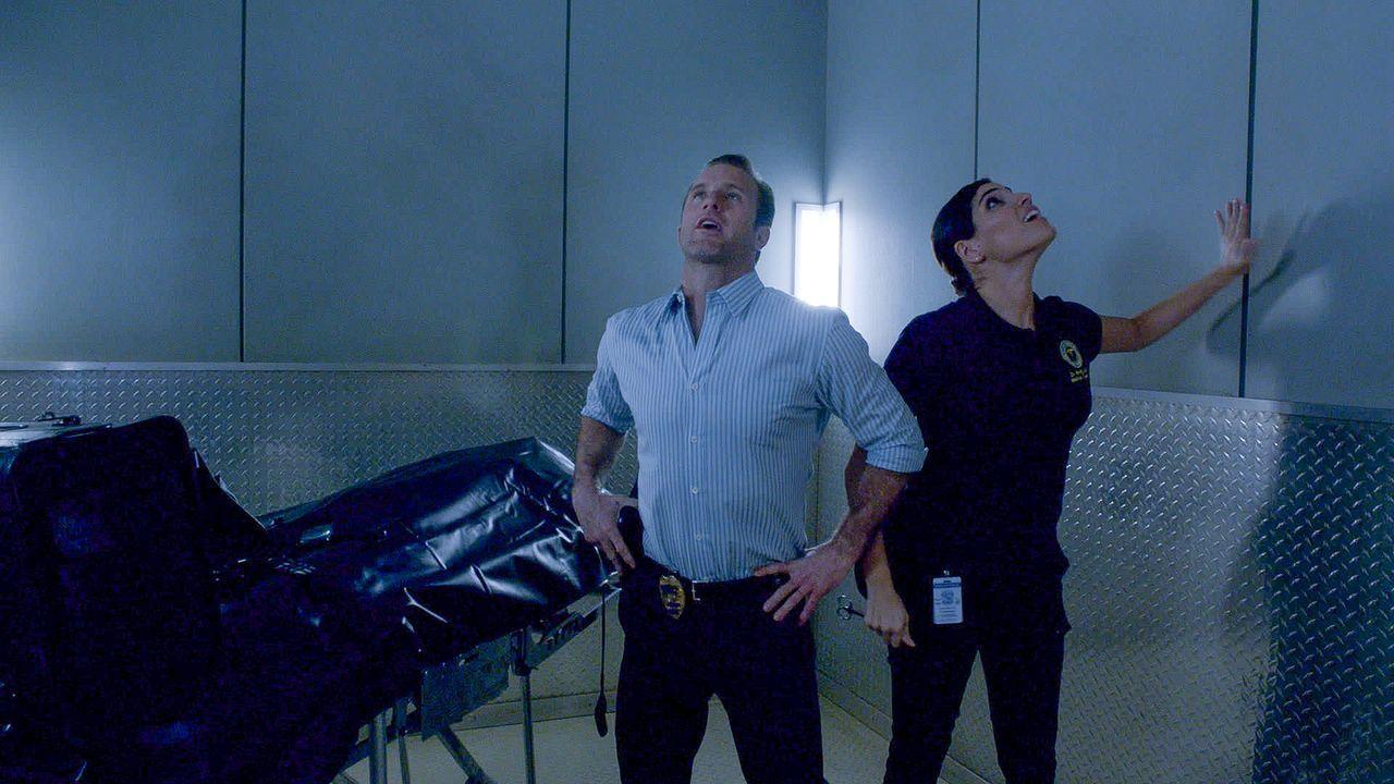 Während Grover an der Aufrichtigkeit seines besten Freundes zweifelt, erlebt Danny (Scott Caan, l.) einen schlimmen Moment, als er mit Dr. Shaw (Ama... - Bildquelle: 2015 CBS Broadcasting Inc. All Rights Reserved.