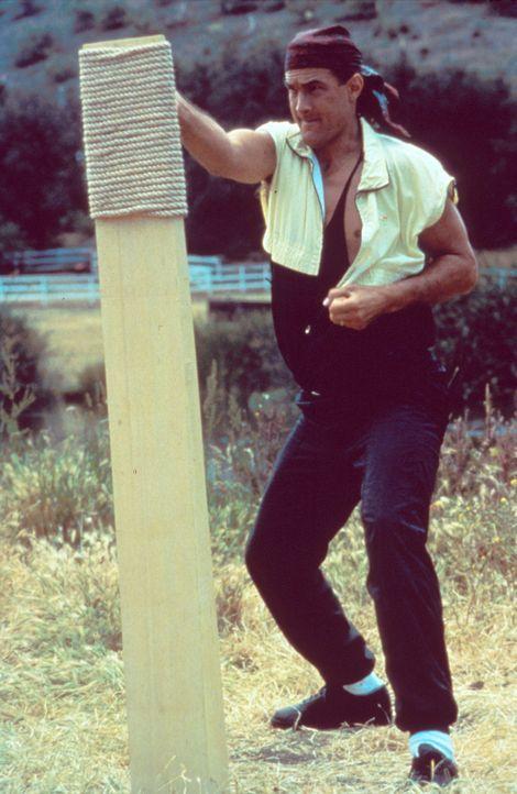 Um sich wieder fit zu machen, muss Mason (Steven Seagal) hart trainieren ... - Bildquelle: Warner Bros.