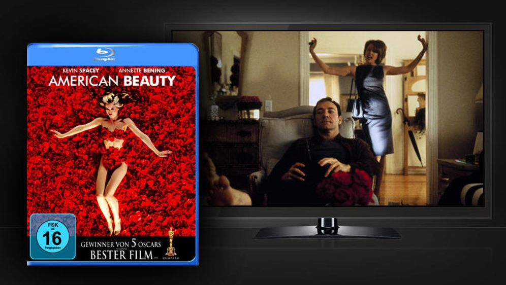 American Beauty (Blu-ray Disc) - Bildquelle: Paramount Pictures