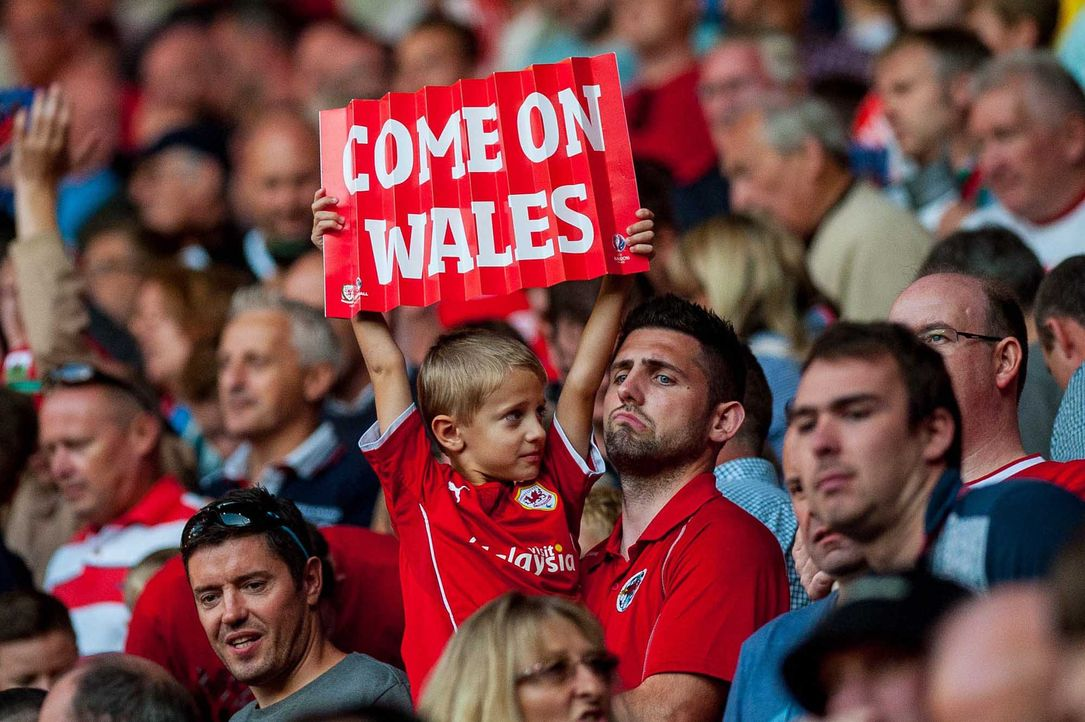 Fußball-Fan-Wales-150906-dpa - Bildquelle: dpa