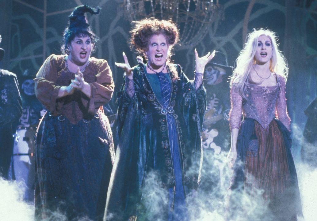 Eines Tages werden die drei Hexen (v.l.n.r.) Mary (Kathy Najimy), Winifred (Bette Midler) und Sarah (Sarah Jessica Parker) aus ihrem 300-jährigen S... - Bildquelle: The Walt Disney Company. All Rights Reserved