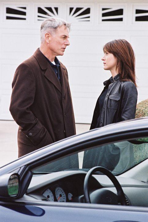 Ein neuer Fall bereitet Gibbs (Mark Harmon, l.) und Kate (Sasha Alexander, r.) Kopfzerbrechen ... - Bildquelle: CBS Television