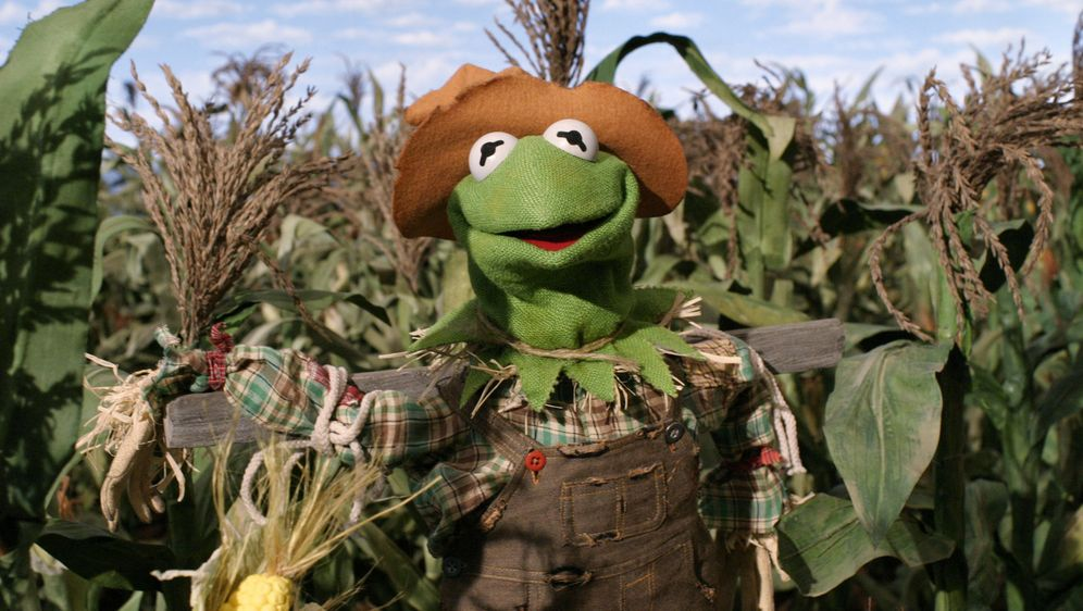 Muppets: Der Zauberer von Oz - Bildquelle: The Muppets Holding Company, LLC. MUPPETS characters and elements are trademarks of the Muppet Holding Company, LLC.  All rights reserved