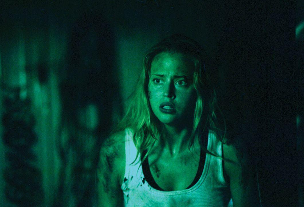 Nachdem sie mitansehen musste, wie ihr Freund auf brutale Art und Weise ermordert wurde, heisst es für Kristy (Estella Warren), Nerven zu bewahren .... - Bildquelle: HSI Entertainment
