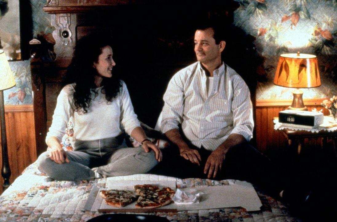 Phil (Bill Murray, r.) ist in eine Zeitschleife geraten und erlebt mit seiner Kollegin Rita (Andie MacDowell, l.) den 2. Februar wieder und wieder ... - Bildquelle: Columbia TriStar