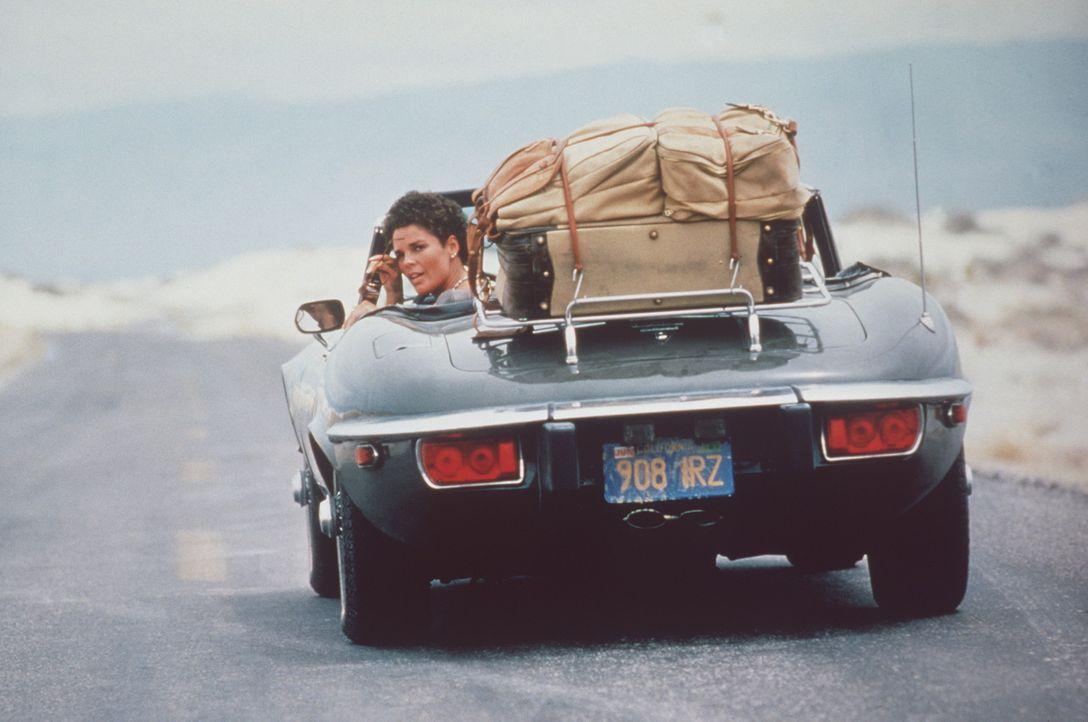 Auch die Freundin von 'Rubber Duck', Melissa (Ali MacGraw), schließt sich dem Lastwagen-Convoy Richtung Mexiko an ... - Bildquelle: Neue Constantin Film