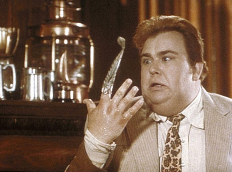 Der schwergewichtige Privatdetektiv Harry Crumb (John Candy) stolpert von einem Fettnäpfchen ins andere ...