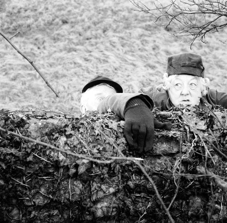 Wenn sie eine heiße Spur verfolgt, dann klettert sie auch schon mal ein paar Wände hoch: Hobbydetektivin Miss Marple (Margaret Rutherford) ... - Bildquelle: Warner Brothers
