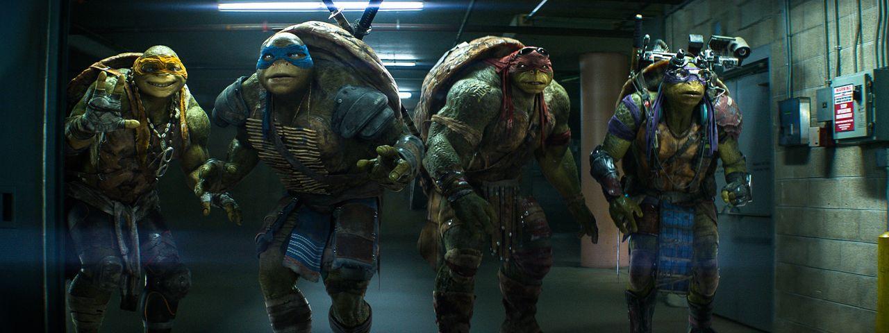 Obwohl die Riesenschildkröten Michelangelo (Noel Fisher, l.), Leonardo (Pete Ploszek, 2.v.l.), Raphael (Alan Ritchson, 2.v.r.) und Donatello (Jeremy... - Bildquelle: MMXIV Paramount Pictures Corporation. All Rights Reserved.