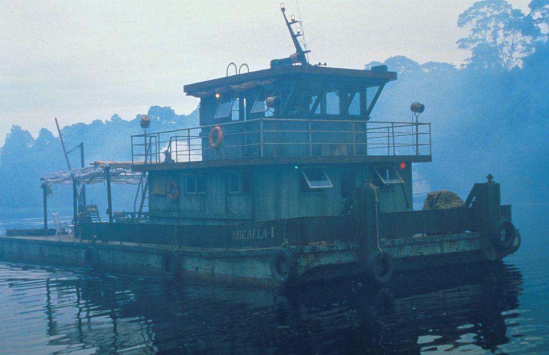 Ruhig dümpelt das Flussboot dem Schrecken des Amazonas entgegen ... - Bildquelle: Columbia TriStar