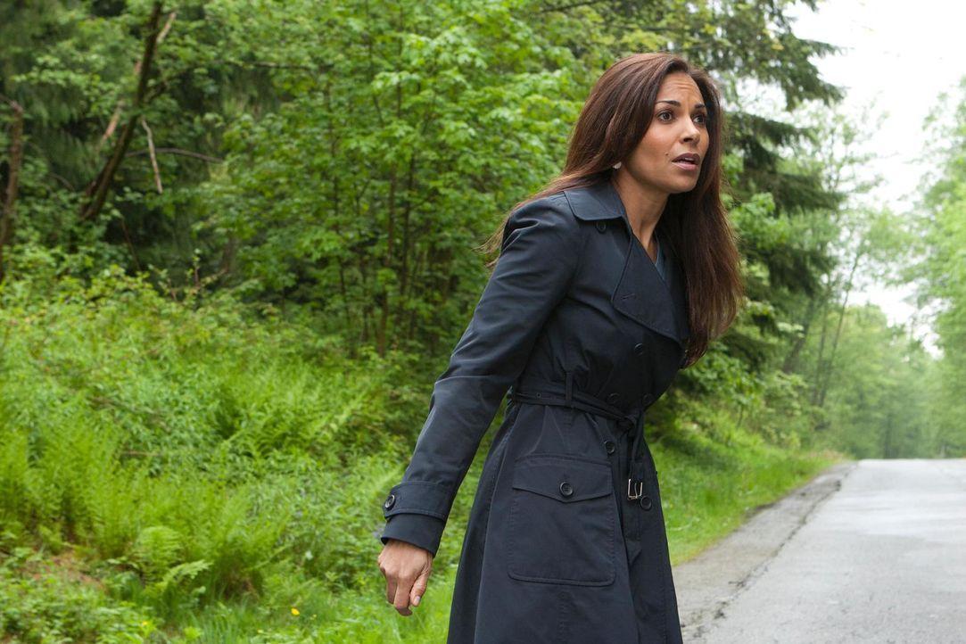 Als eine Technologie außer Kontrolle gerät, ahnt Allison (Salli Richardson-Whitfield) Schlimmes ... - Bildquelle: Universal Television