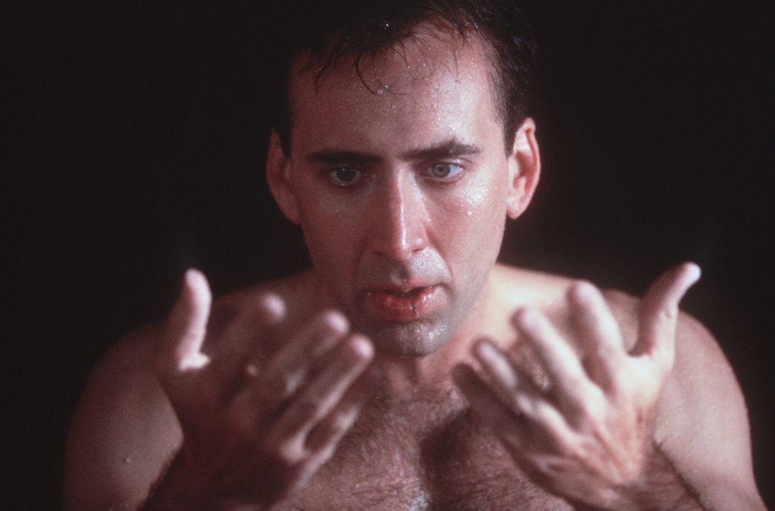 Der unsterbliche Engel Seth (Nicolas Cage) träumt davon, zu fühlen, zu berühren und zu lieben wie ein Mensch. Er verliebt sich in die sterbliche Mag... - Bildquelle: Warner Bros.