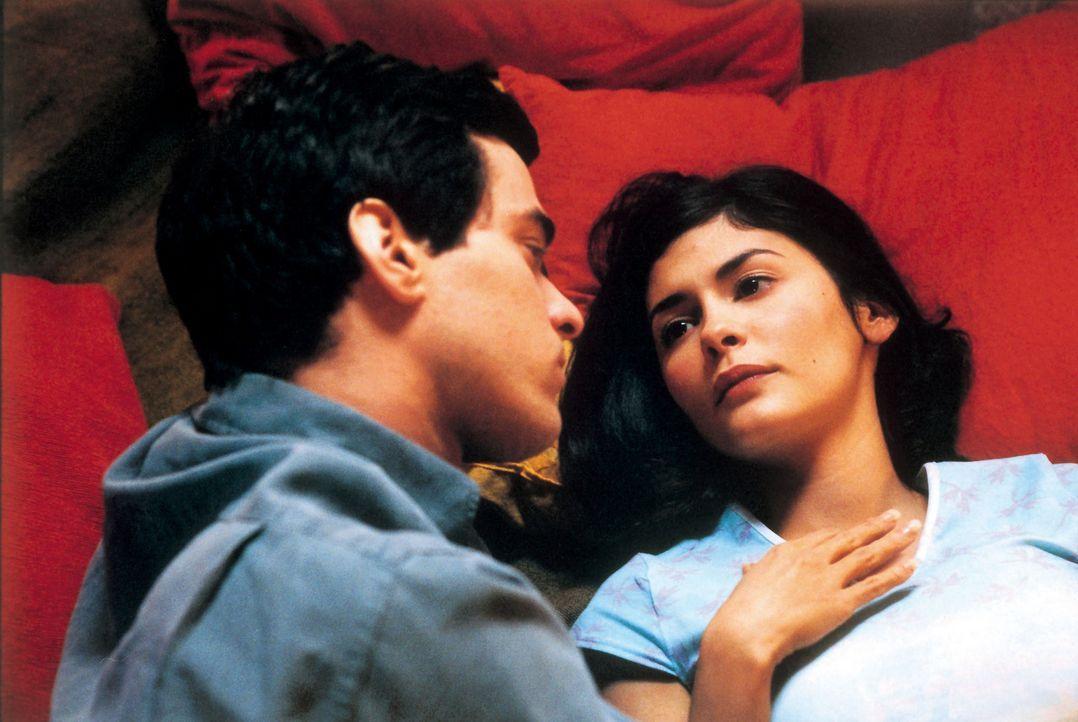 Martine (Audrey Tautou, r.) ist traurig, dass ihr Freund Xavier (Romain Duris, l.) für ein Jahr nach Spanien gehen wird ? - Bildquelle: Tobis Film GmbH & Co. KG
