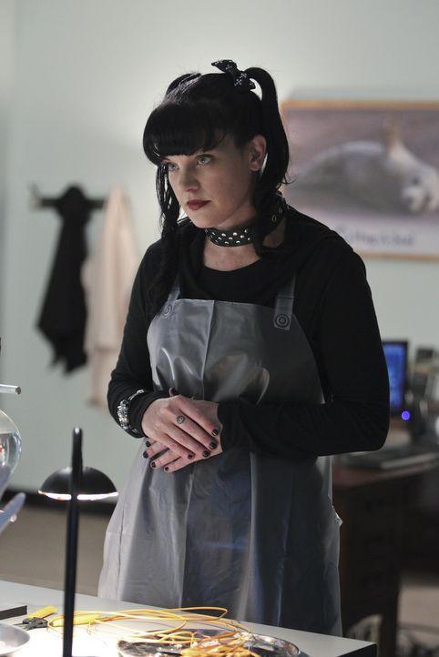 Bei den Ermittlungen in einem neuen Fall gerät Abby (Pauley Perrette) selbst in Gefahr ... - Bildquelle: Sonja Flemming CBS Television / Sonja Flemming