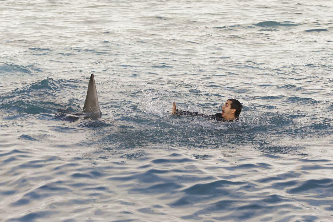 Während Walter (Elyes Gabel) nach einem Bootunglück mitten im Meer auf eine ganze Horde Haie trifft, wird Sylvester mit einigen unangenehmen Fragen... - Bildquelle: Monty Brinton 2016 CBS Broadcasting, Inc. All Rights Reserved. / Monty Brinton