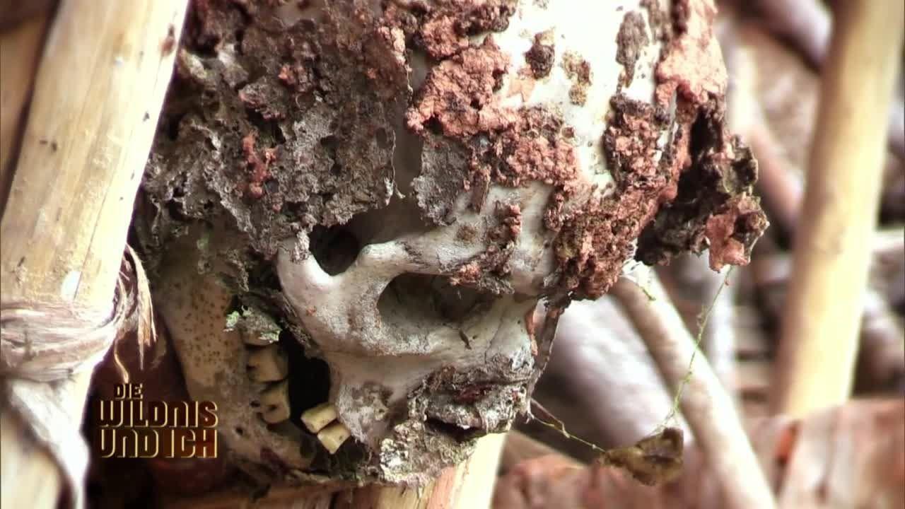 Gress in Papua Neuguinea8 - Bildquelle: kabel eins