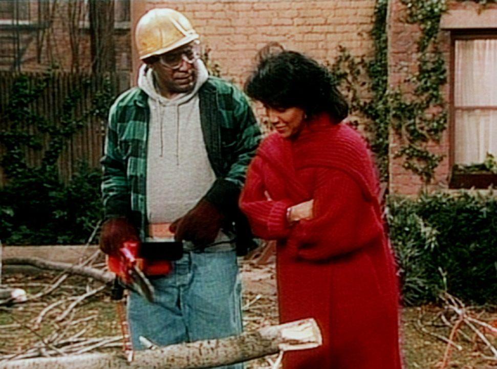 Cliff (Bill Cosby, l.) versucht sich als Waldarbeiter im Garten, worüber Clair (Phylicia Rashad, r.) nur milde lächeln kann. - Bildquelle: Viacom