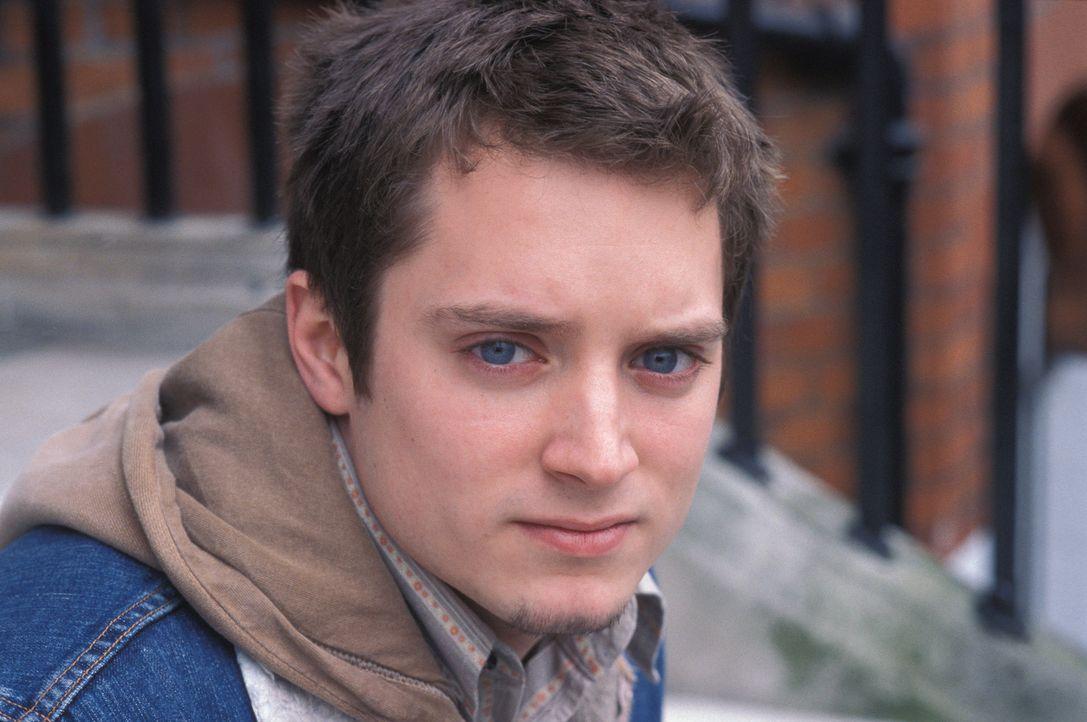 Eines Tages rutscht der eher sensible Matt (Elljah Wood) in die Untergrund-Fanorganisation des Westham United FC, in eine Welt, die von Brutalität... - Bildquelle: Odd Lot Entertainment