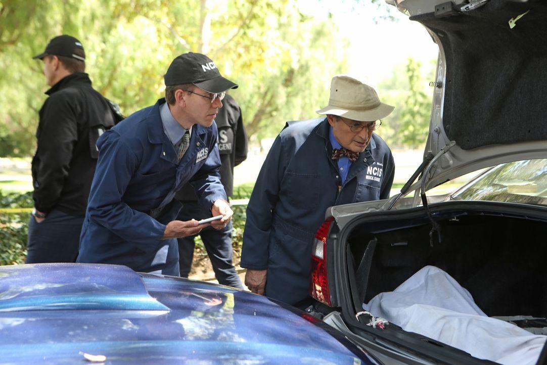 Suchen am Tatort nach Hinweisen: Ducky (David McCallum, r.) und Jimmy (Brian Dietzen, l.) ... - Bildquelle: Monty Brinton CBS Television