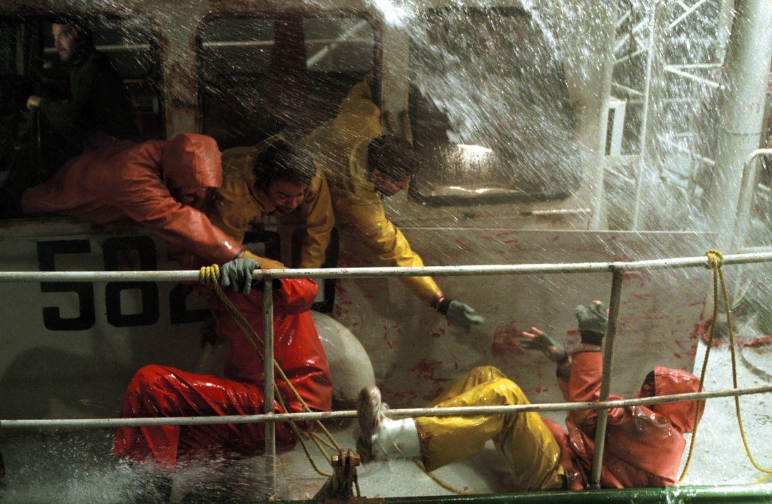 Eine wahre Geschichte: Im Herbst 1991 stößt der Hurricane Grace vor der Ostküste der USA auf zwei weitere Schlechtwetterfronten. Dadurch braut sich... - Bildquelle: Warner Bros. Pictures