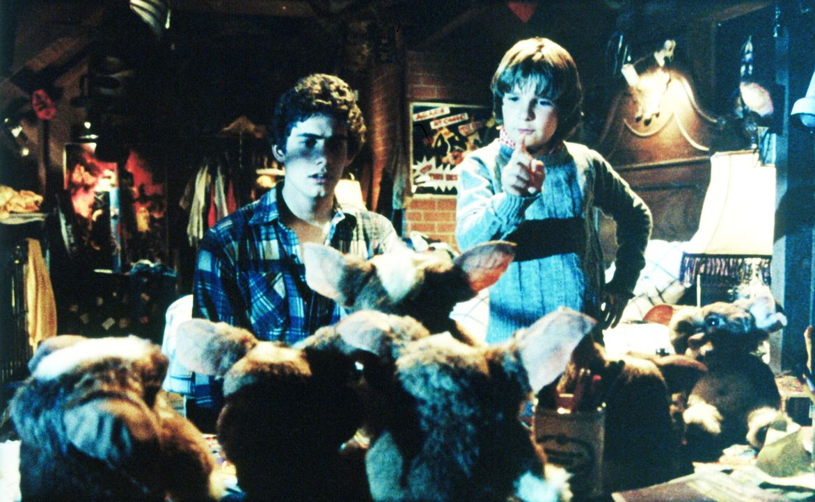 Eine der Regeln für Gizmo ist, dass er nicht mit Wasser in Berührung kommen darf. Billy staunt nicht schlecht, als sich Gizmo auf einmal verfünffach... - Bildquelle: Warner Bros.