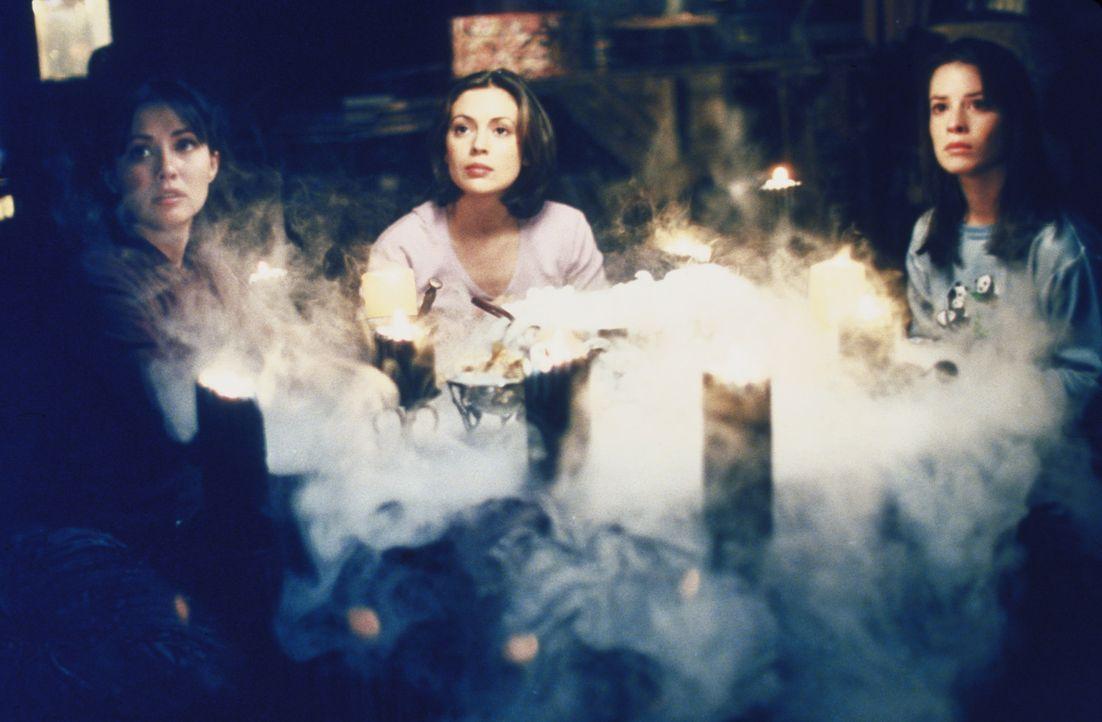 Rex und Hannah wollen den Hexenmeister befreien, um dann Piper (Holly Marie Combs, r.), Prue (Shannen Doherty, l.) und Phoebe (Alyssa Milano, M.), u... - Bildquelle: Paramount Pictures