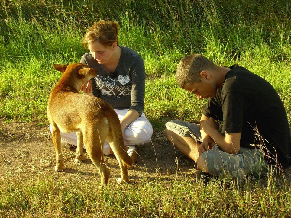 Bei der Aborigine-Clanchefin LakLak auf Bremer Island (Australien) sollen Dana (l.) und Samer (r.) endlich ihre Lektion lernen. Widerworte? Fehlanze... - Bildquelle: kabel eins