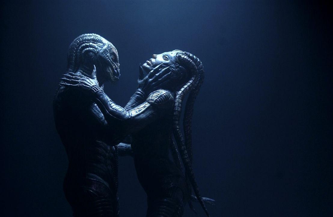 Weil die Alien-Mischlinge an einem tödlichen Immundefekt leiden, wollen sie nur noch eines: Saras perfekten Organismus! Sofort entbrennt eine tödl... - Bildquelle: 2007 MGM International Television Distribution