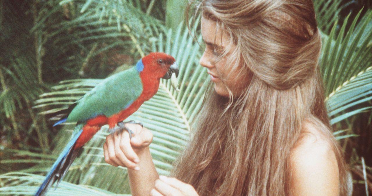 Auf dem einsamen Eiland lebt Emmeline (Brooke Shields) wie im Paradies. - Bildquelle: Columbia Pictures
