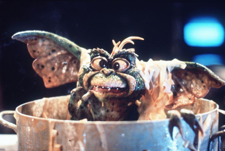 Selbst ein Gremlin schaut ganz schön dumm aus der Wäsche, wenn er mit Wasser bespritzt wird und dann auch noch in einen Nudeltopf fällt ... - Bildquelle: Warner Bros.