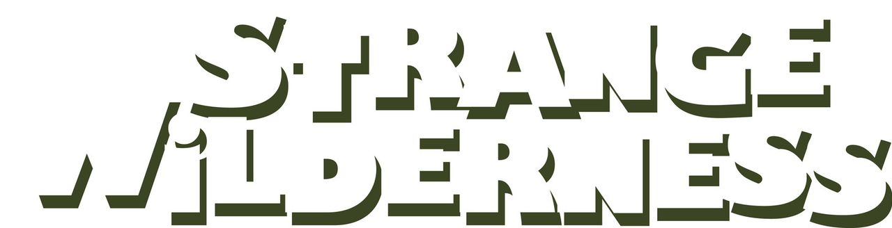 STRANGE WILDERNESS - Logo - Bildquelle: Paramount Pictures