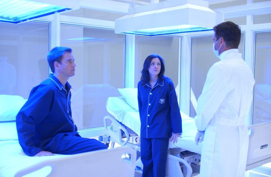 Dr. Pitt (Steven Eckholdt, r.) teilt Kate (Sasha Alexander, M.) und Tony (Michael Weatherly, l.) die Untersuchungsergebnisse mit ... - Bildquelle: CBS Television