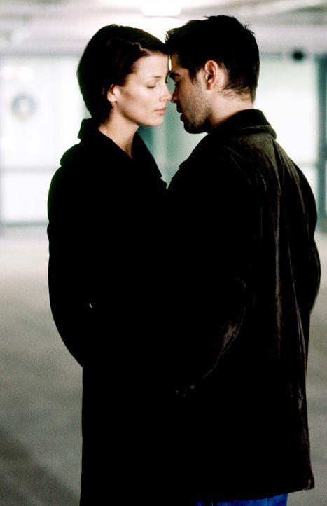 Schon bald verliebt sich James (Colin Farrell, r.) in seine härteste Konkurrentin Layla (Bridget Moynahan, l.). Doch ist die junge Frau eine Ostspi... - Bildquelle: SPYGLASS ENTERTAINMENT GROUP.LP.ALL RIGHTS RESERVED