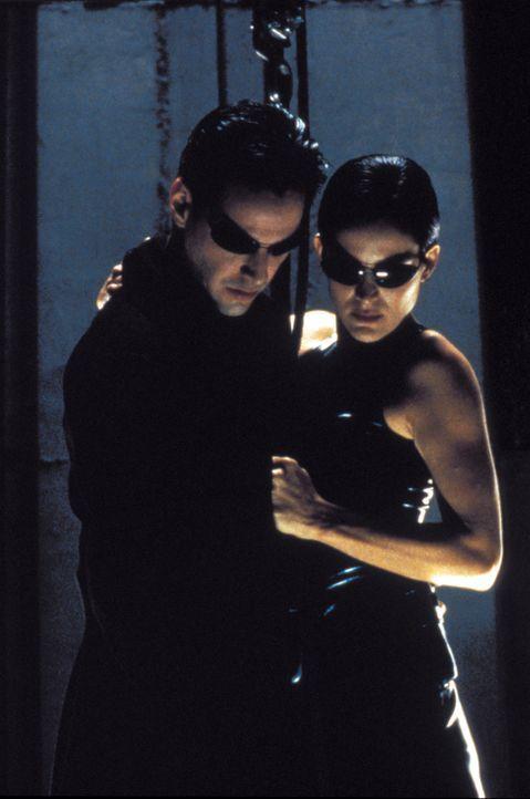 Neo (Keanu Reeves, l.) und Trinity (Carrie Anne Moss, r.) müssen sich durch ein schwer bewachtes Hochhaus kämpfen, um Morpheus zu befreien. Ihr Weg... - Bildquelle: Warner Bros. Pictures