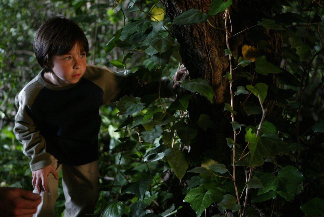 Was hat der kleine Reed (Jansen Weinstein) im Wald zu suchen? - Bildquelle: Warner Bros. Entertainment Inc.