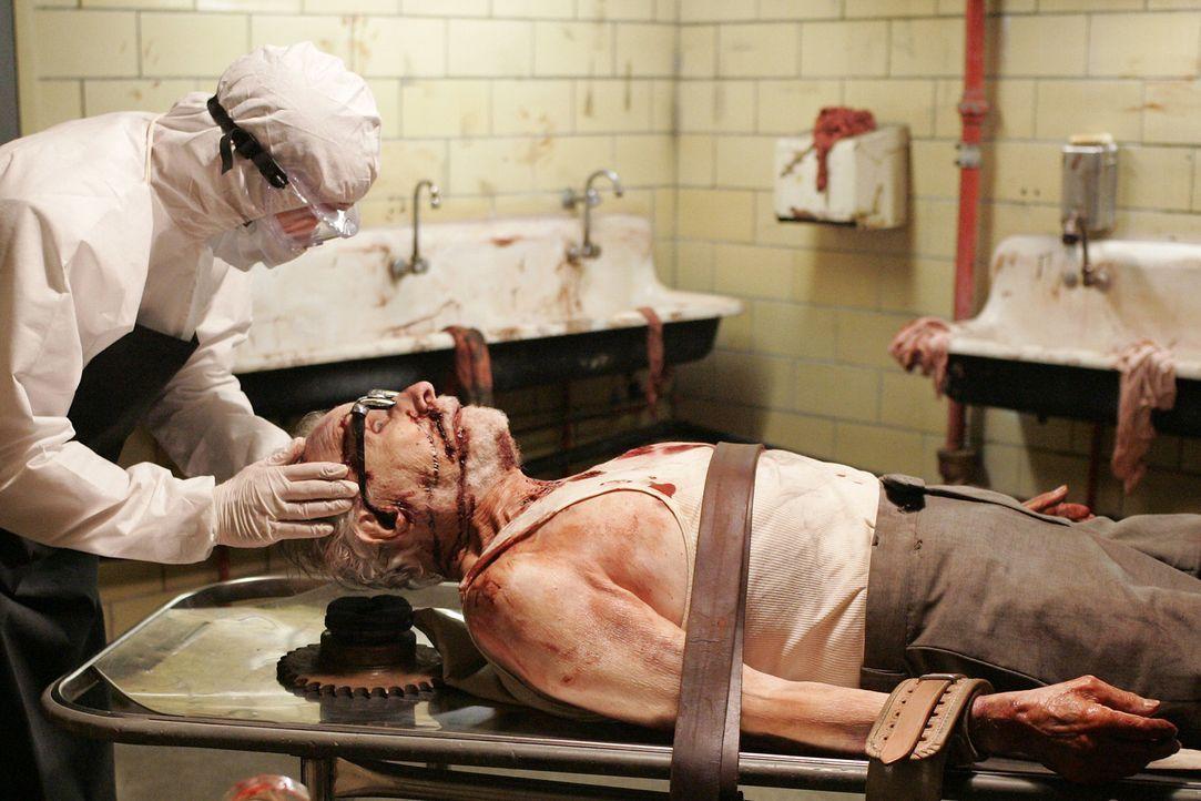 Tot oder lebendig?: Nate (Jack Donner, r.) ... - Bildquelle: Touchstone Television