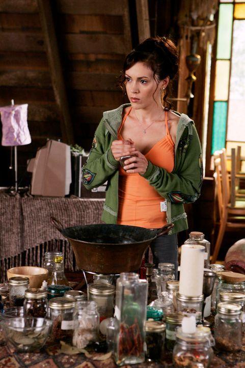 Paige versucht herauszufinden, ob Dex, Phoebes (Alyssa Milano) neuer Freund, noch etwas mit seiner Ex hat ... - Bildquelle: Paramount Pictures