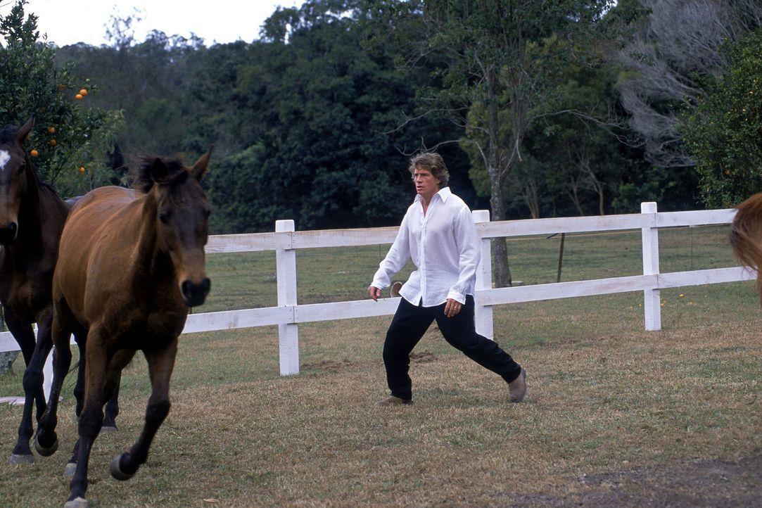 Der wohlhabende Schnösel Lyle Van de Groot (Thomas Haden Church) mimt den Pferdeflüsterer, doch wie es scheint, verstehen die Vierbeiner seine Spr... - Bildquelle: Walt Disney Pictures