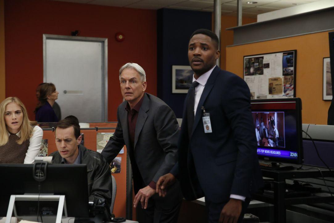 Gibbs (Mark Harmon, 2.v.r.), McGee (Sean Murray, 2.v.l.) und Bishop (Emily Wickersham, l.) befinden sich weiter in enger Zusammenarbeit mit dem FBI... - Bildquelle: Cliff Lipson 2016 CBS Broadcasting, Inc. All Rights Reserved / Cliff Lipson